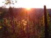 Napnyugta a szőlőhegyen