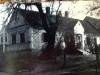 Szakos György ( Gábor Gyuri) háza, még áll az eperfa. Kb. 1964. ( pajtás fényképezőgéppel) . Az eperfa legendája szerint, Búcsú alatt, mise alatt, harangozás közben borult ki magától. Nem volt se szél, se rossz idő, a fa teljesen egészséges, bár már nagyon öreg volt.
